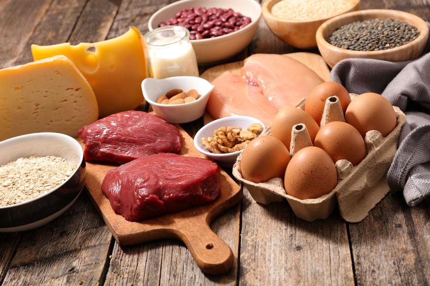 protein - zdroj