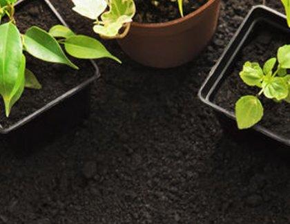 ako si pripraviť domáce hnojivo