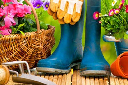 ako pripraviť záhradu na jar