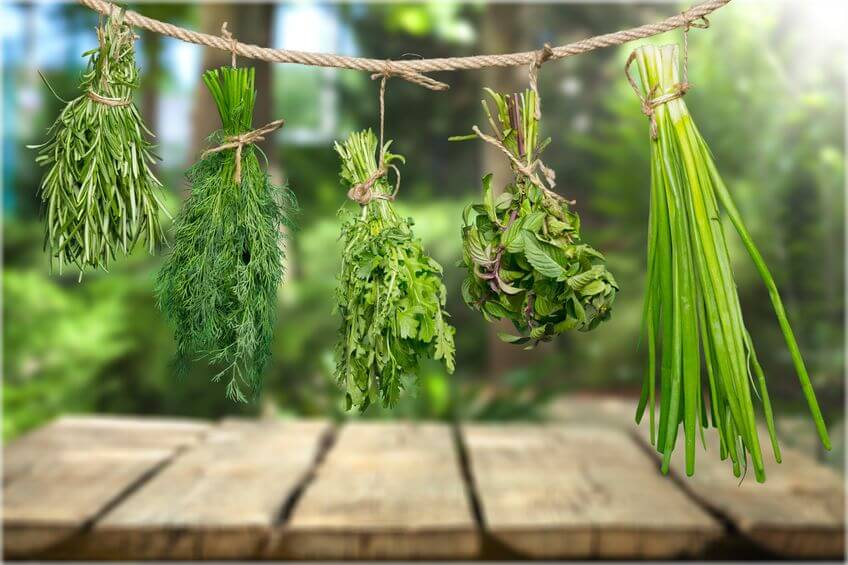Spôsob, ako sušiť bylinky je aj formou zväzkov zavesených dolu hlavou