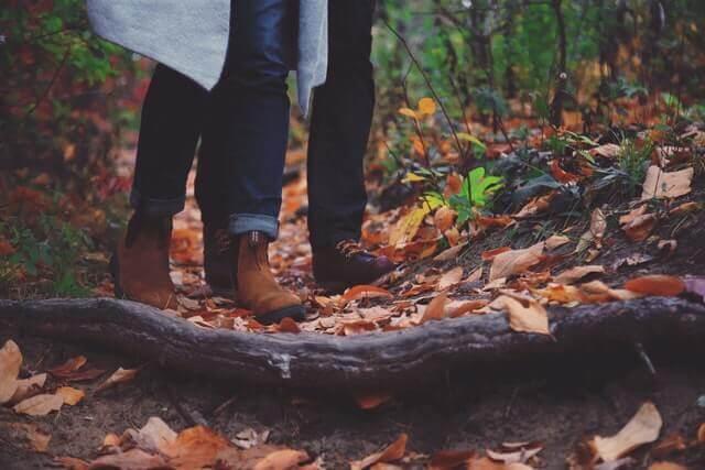 počasie na jeseň_les_listy